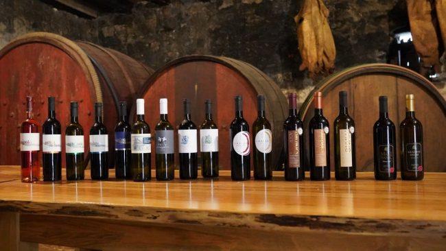 Slike vino Stari Grad_1200x676